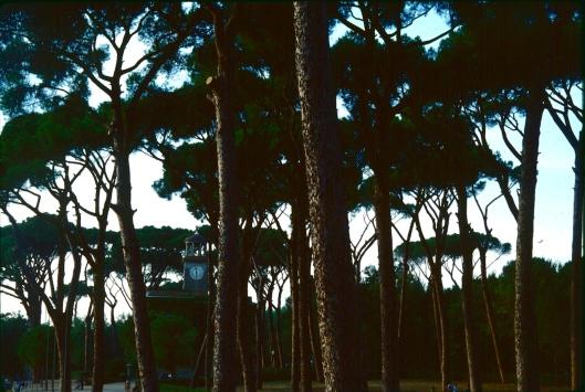 002_villa borghese notte 180