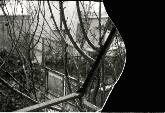 003_vetro rotto