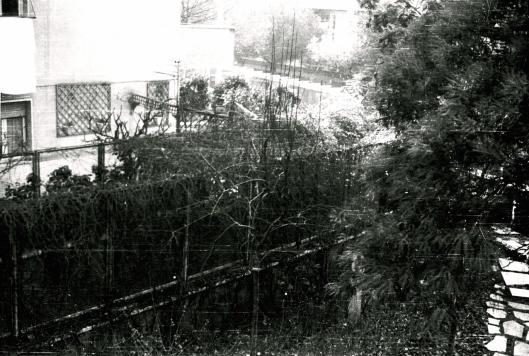 004_giardino 180