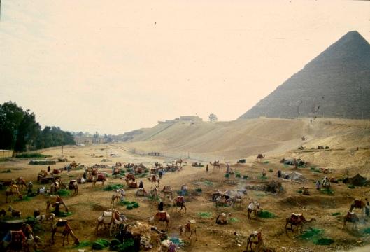 009_Egitto piramidi 01 180