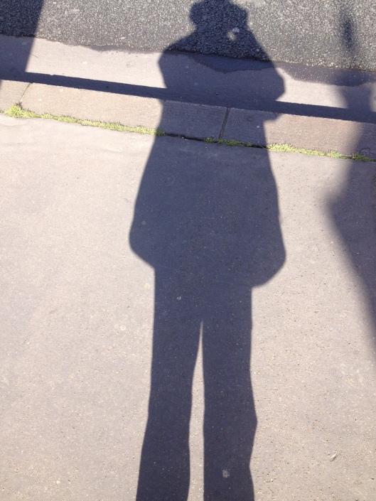 002_ombre pour royo 180