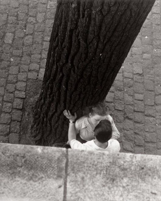 003_bacio albero